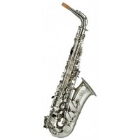 Artemis A1 Alto Sax Outfit - Silver Plated