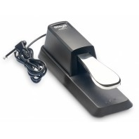 Piano Type Sustain Pedal