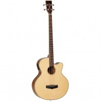 Tanglewood Acoustic Bass Winterleaf Series Guitar - TW8 E AB