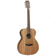 Tanglewood Winterleaf TW2ASE Electro Acoustic Guitar